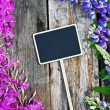 Wild flowers and a black board — Stock Photo