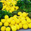 Fresh yellow lemons — Stock Photo