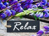 Dzikie kwiaty i etykiety z tekstem relaks — Zdjęcie stockowe