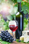 Copa de vino tinto — Foto de Stock