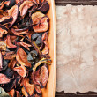 Dry flowers in shades of orange and old paper — Stock Photo