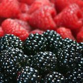 çeşitli meyveler arka plan — Stok fotoğraf