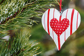 Toy heart hanging on a winter tree — Foto de Stock