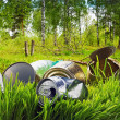 Stock Photo: Forest contaminated waste and garbage