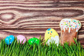 cookies and colored eggs for Easter — Stock Photo