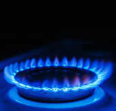 Blue flames of gas burning from a kitchen gas stove  — Stock Photo
