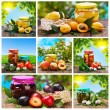 Set of canned vegetables and fruits — Stock Photo