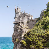Swallow's Nest — Photo