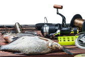 Fishing tackle and caught fish — Stock Photo