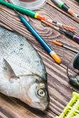 Caught fish and fishing tackle   — ストック写真