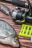 Caught fish and fishing tackle — Stok fotoğraf