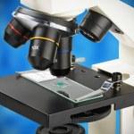 Microscope lenses focused on a specimen — Stock Photo #51731953