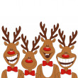 Christmas illustration of cartoon reindeer. — Stockvektor