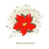 Christmas flowers — Stock Vector