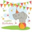 Happy Birthday card — Stock Vector #19556085