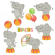 Collection of cute circus elephant — Stock Vector #24007335