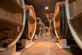 Wine cellar underground storage — Foto Stock