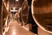 Wine cellar underground storage — Stock fotografie
