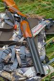 Hunting gun — Stock Photo