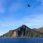 鸟对沿海岩石和海洋 1 — 图库照片