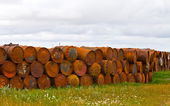 The thrown barrels — Foto Stock