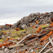 Stock Photo: North dump