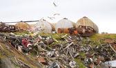 Ocean coast dump — Stock Photo