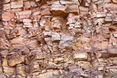 Devonian limestone — Stock Photo