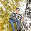 Stock Photo: Teenager climb a tree