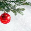 Christmas decorations — Stock Photo #14184897