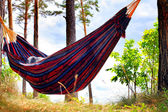 Hammock in the Forest — Stock Photo