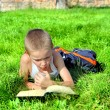 Little Boy Reads Book - Stock Photo