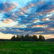 Evening Nature Landscape — Stock Photo