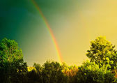 Vintage Landscape With Rainbow — Stock Photo