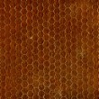 Stockfoto: Brown Seamless Texture
