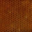 bruin naadloze textuur — Stockfoto