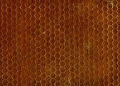 Brown Seamless Texture — Stock Photo