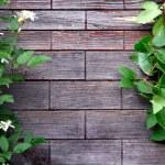 hölzerne Hintergrund mit Blättern — Stockfoto