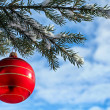 Christmas Decorations — Stock Photo #33165073