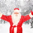 Happy Santa Claus in Forest — Foto de Stock