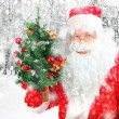 Stock Photo: SantClaus with Christmas Tree