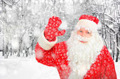 Santa Claus in Winter Forest — Stock Photo