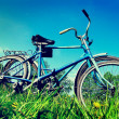 Two Old Bicycle — Stockfoto