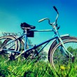 Two Old Bicycle — Lizenzfreies Foto