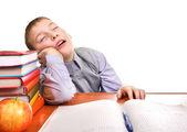 Bored Schoolboy is sleeping — Stock Photo