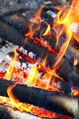 Campfire closeup — Stockfoto