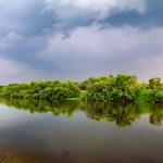River Nature Landscape — Stock Photo