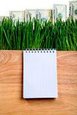 Writing Pad on the Board — ストック写真