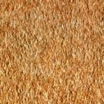 Macro of Paper Texture — Stock Photo #46933217