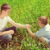 Irmãos no campo — Foto Stock